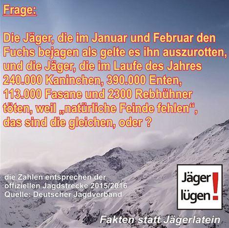 fuchse_jagerlugen_fritz-ullmann