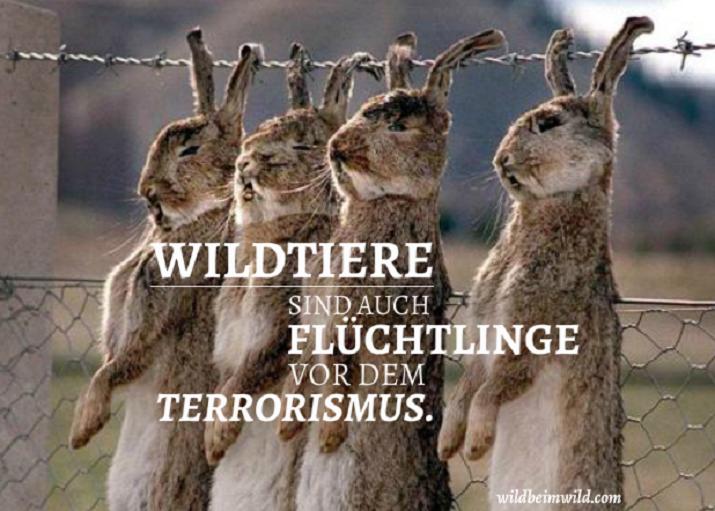der-terrorist-im-jc3a4ger