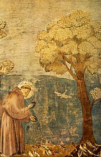 giotto_-_sermon_to_the_birds-thumbnail200
