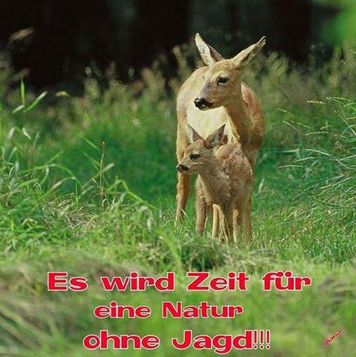 Natur-ohne-Jagd