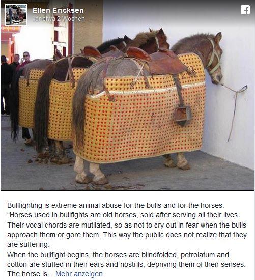 Stierkampf-Pferde-sterb-oft