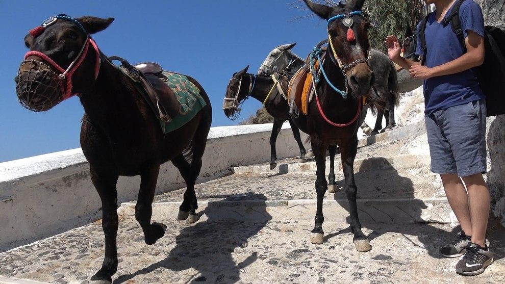 2019-11-06-touristen-in-bedraengnis-santorin-c-peta-d